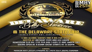 AMERICAN BULLY DOG SHOW TX & DE MAY 25TH 2 BRC GLOBAL SHOWS THIS WEEKEND