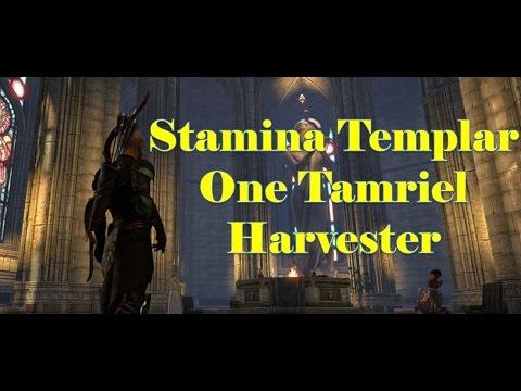 Stamina Templar DPS For One Tamriel [The Harvester]