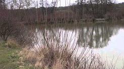 TRICKLEBROOK FISHERY, COLTS HILL, FIVE OAK GREEN, KENT