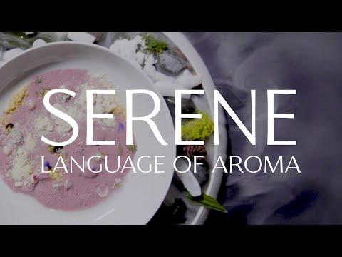 Harmony Herbal x Taj Campton Place | Language of Aroma Sensory Experience | TEALEAVES