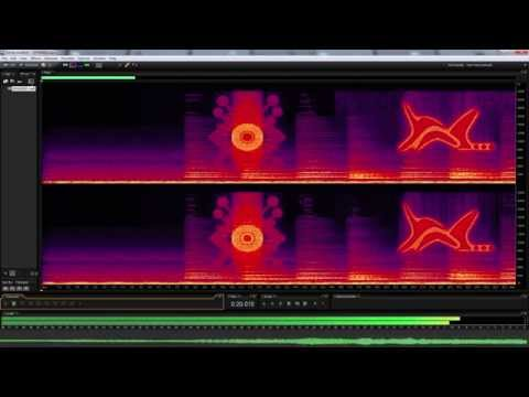 Unknown audio waveform containing hidden images