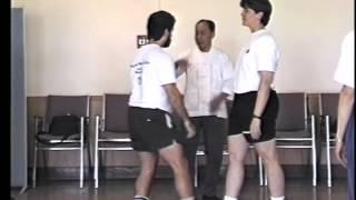 Tuishou Exercise 4 - Yangjia Michuan Taijiquan