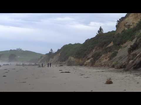 Moeraki Boulder Beach And Banks