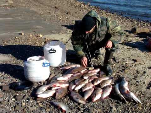 Летняя рыбалка в Заполярье Ненецкий автономный округ