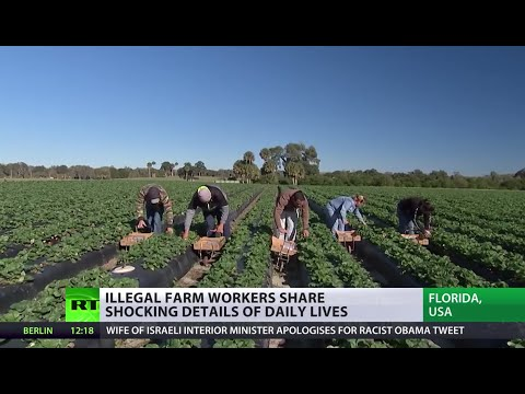 Sunshine State Secret: Illegal farmworkers share stories of abuse in Florida