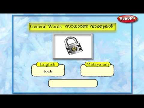 Learn Malayalam Through English | Lesson - 05 | General Words  |  Vocabulary