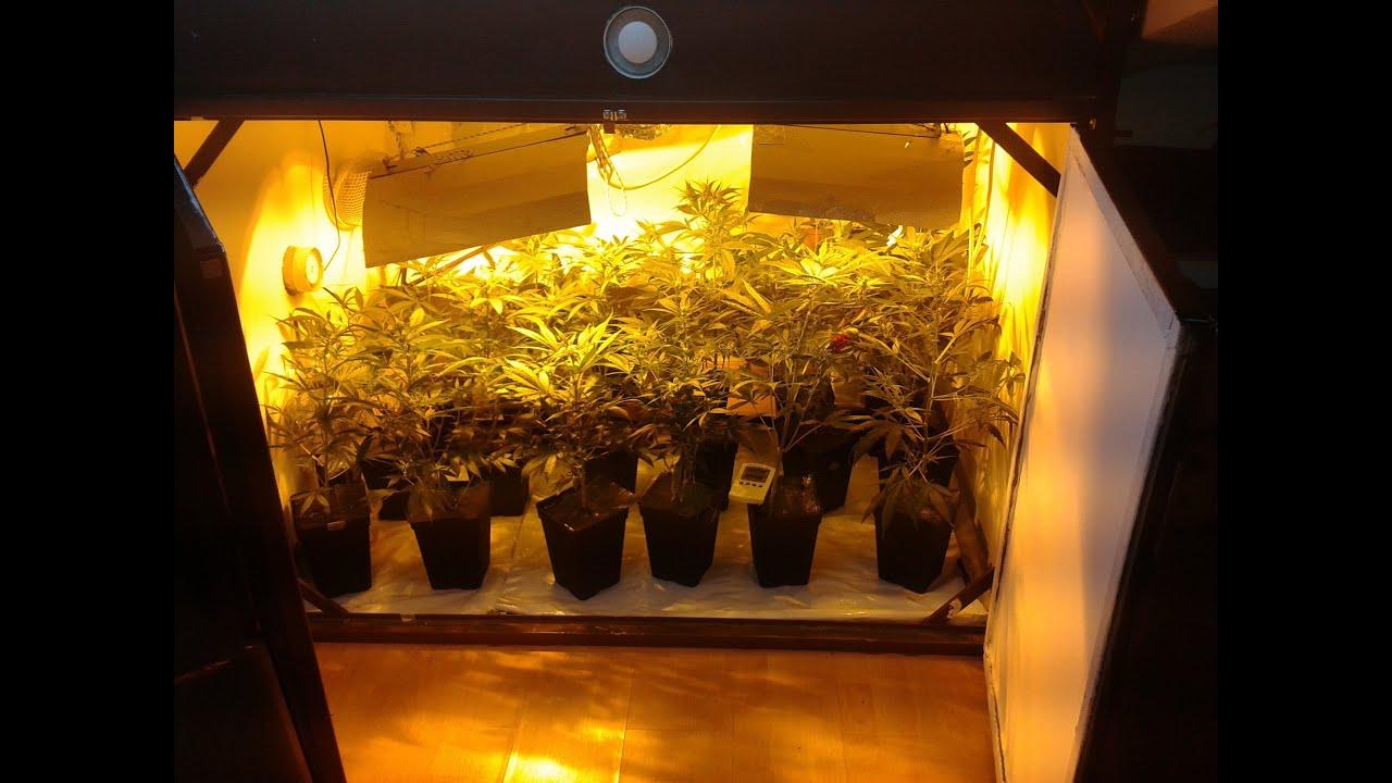 Tutorial como construir un indoor de marihuana de gran for Como poner un vivero