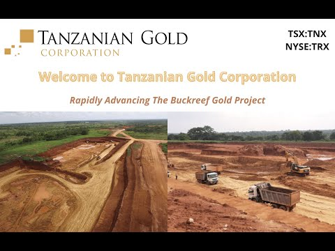 Tanzanian Gold Corporation Overview