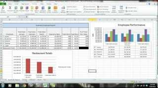 MS Excel 2010 Tutorial: Employee Sales Performance Report, Analysis & Evaluation - PART 1 thumbnail
