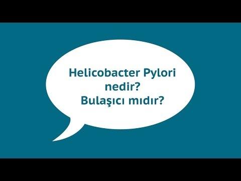 Helicobacter Pylori Nedir? Bulaşıcı mıdır?