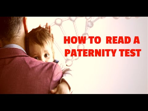 How To Read A Paternity Test Results Review