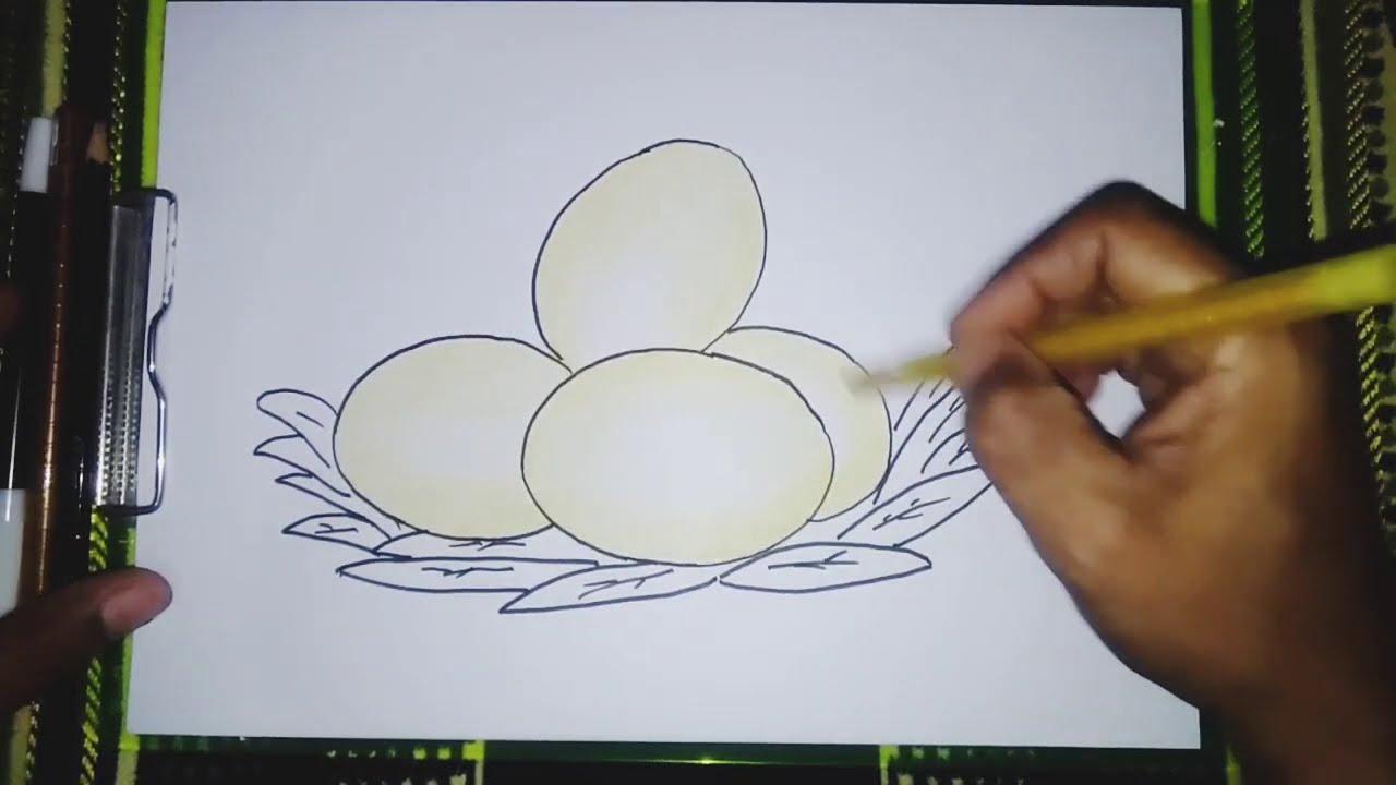 Belajar Menggambar Telur Ayam Yang Bagus Tapi Caranya Mudah Youtube