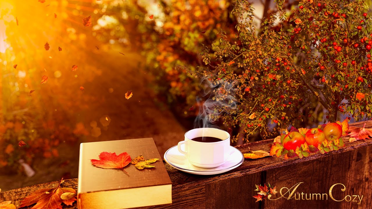 Image result for Autumn morning images