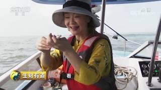 《生财有道》 20190628 夏日经济系列——广东茂名:渔家风情海边财| CCTV财经