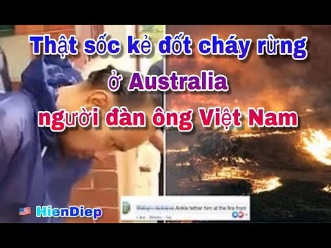 Thật sốc rừng bị cháy ở Úc có bàn tay của người đàn ông Việt