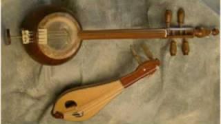 pakistani banjo