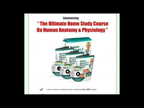 The Best Human Anatomy & Physiology Home Study Course Download