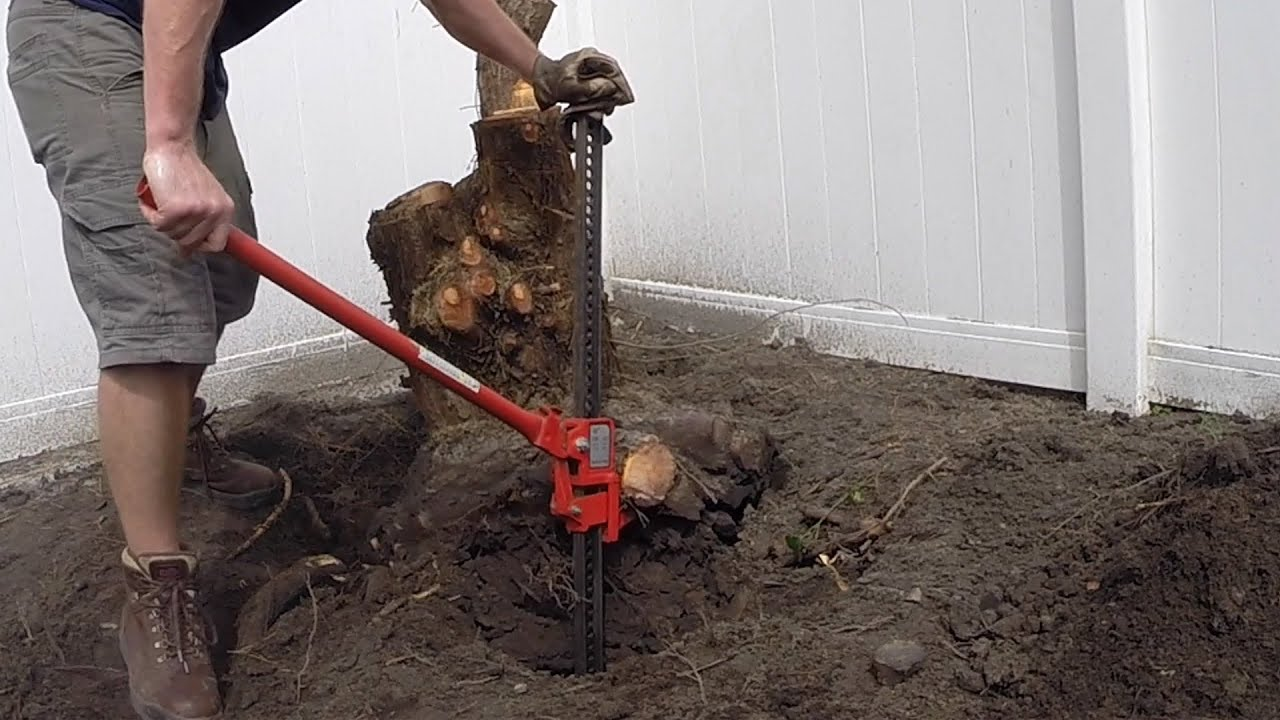 Stump Removal with Farm Jack