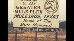 Muleshoe