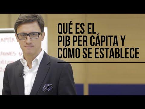 Qué es el PIB Per Cápita y cómo se establece