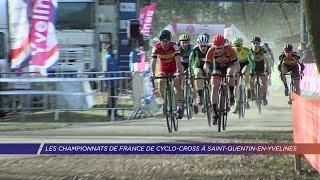 Yvelines | Les championnat de France de cyclo-cross à Saint-Quentin-en-Yvelines