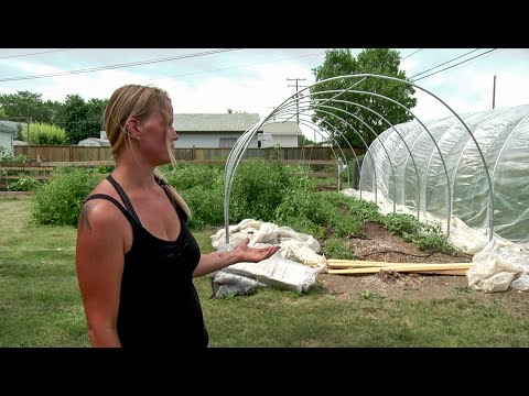 See How Urban Farming Works