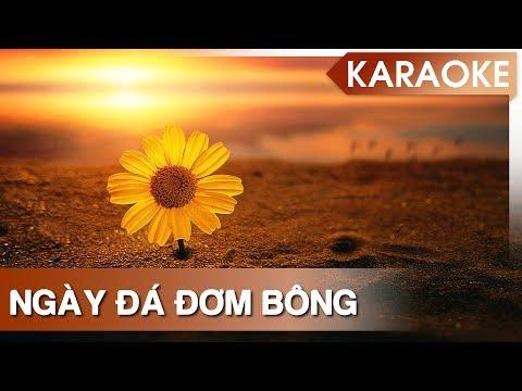 [Karaoke] Ngày Đá Đơm Bông - Beat Gốc