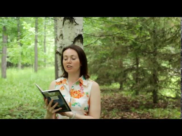 Изображение предпросмотра прочтения – ЛарисаВахонина читает произведение «Бабочка» А.А.Фета