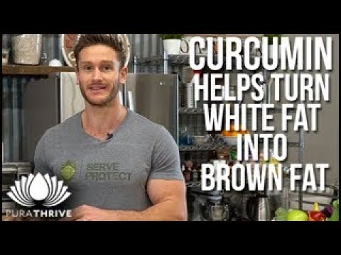 Boost Metabolism with Curcumin: Convert Fats | PuraTHRIVE – Thomas DeLauer