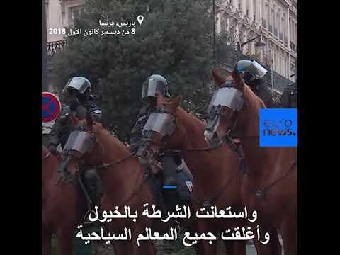 الشرطة الفرنسية تستخدم الكلاب والخيول لإخافة المتظاهرين  - 19:53-2018 / 12 / 8
