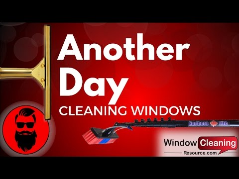 Another Day Window Cleaning