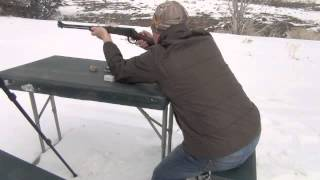 henry 22 lever action