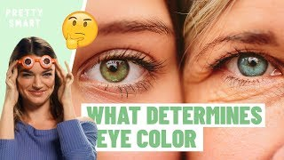 How Unique Is Your Eye Color? | PRETTY SMART