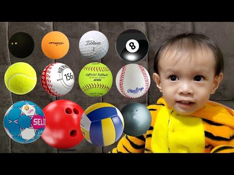 Balls Size Comparison|