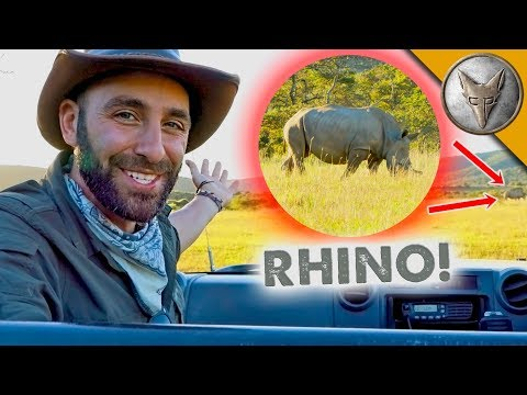 Ultimate Safari Adventure!