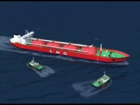 Red Sea Bunkering Services In Djibouti (IOG:2016)