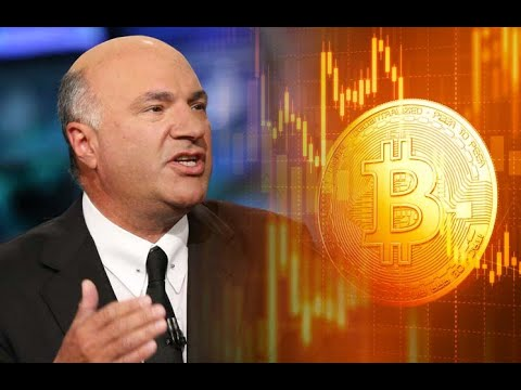 Kevin O'Leary Considers Buying More Bitcoin on The Pomp Podcast - December 1st 2020