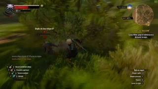 Witcher 3 test streaming ZEOP Réunion Fibre