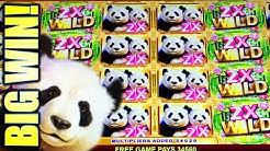 ★BIG WIN! A WHOLE LOT OF PANDAS!!★ PANDA DOUBLE HAPPINESS Slot Machine (Aristocrat)