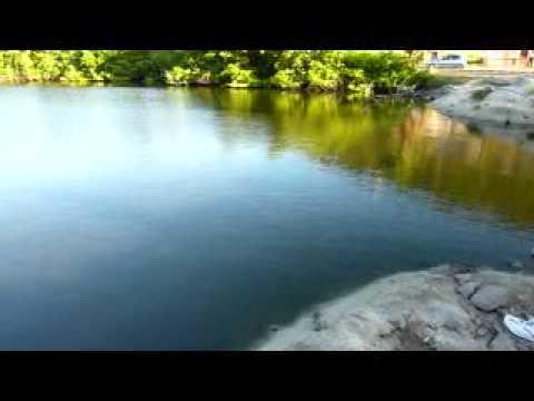Trailer sint maarten dvd doovi for St maarten fishing