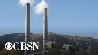 Corporations to lobby for carbon price