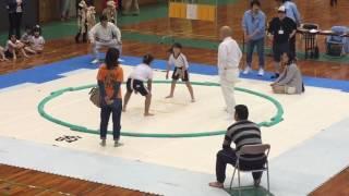 初めてのわんぱく相撲参加!320人と過去最多からの3年生女子2位入賞!敗...