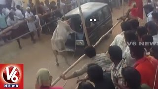 Bull Fight In Chitoor | Two Bulls Die | Police Enter | V6 News