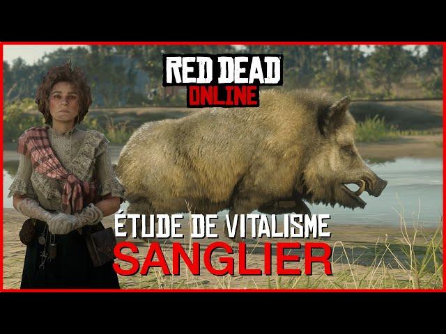 [GUIDE] Se transformer en sanglier avec l'étude de vitalisme • Red Dead Online