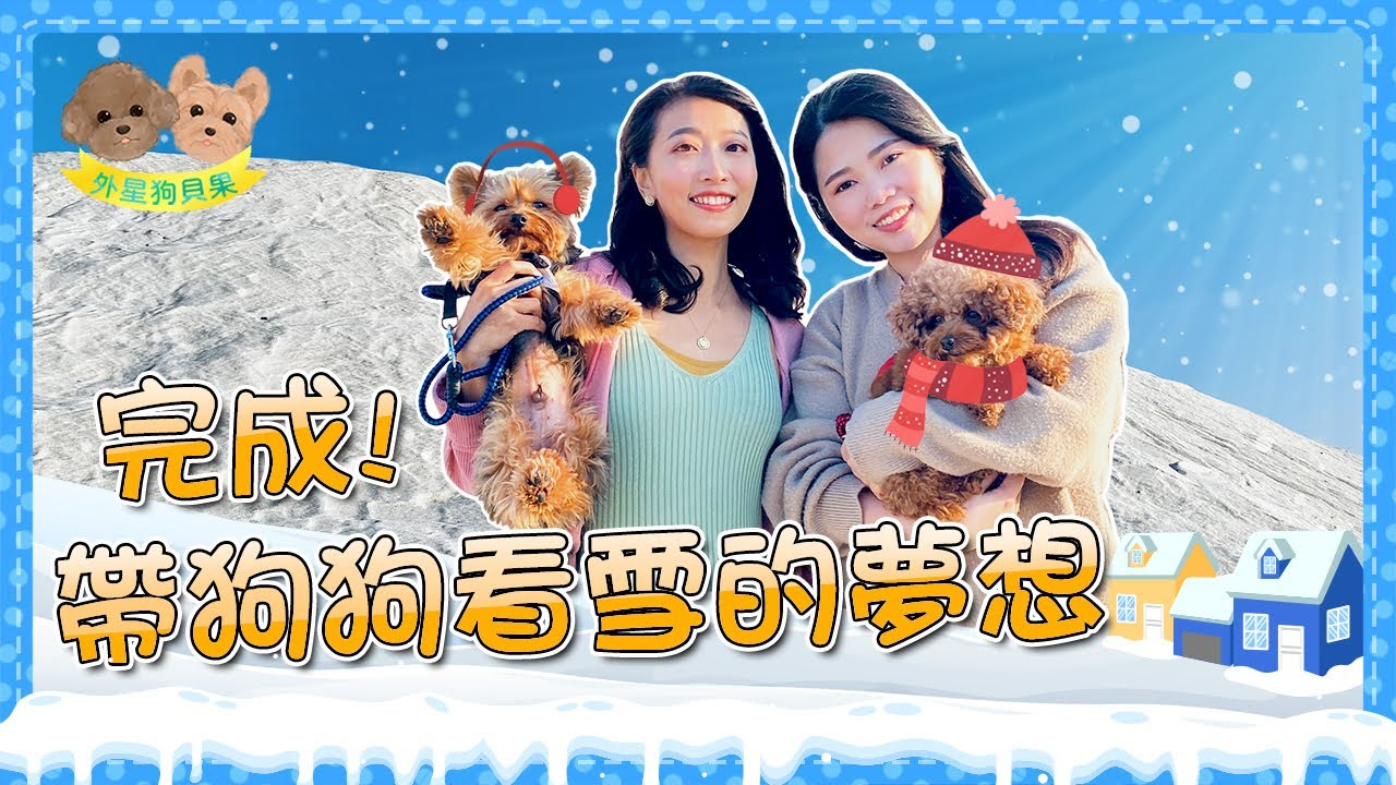 想帶狗狗看雪卻總是追不到雪怎麼辦呢???出發七股鹽山!台南景點一日遊!甜甜的王國|外星狗貝果
