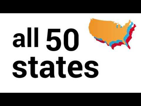 2016 Libertarian Election Infographic