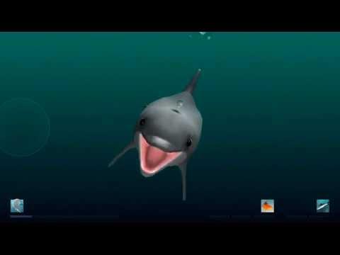 """I Am Dolphin"" iOS Gameplay Video - Bandit vs 2 Herring & 3 Mullet"