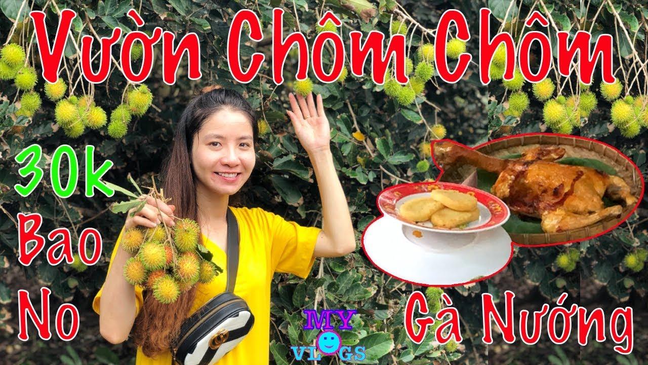 Vườn Chôm Chôm Tây Ninh Mới Nhất 2019 – Chỉ 30k Ăn Thả Ga Tại Vườn / My Vlogs