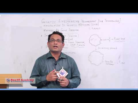 Steps in Genetic Engineering - AIIMS AIPMT State CET Botany Video Lecture