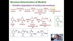 Lecture 4 Menthol